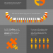 Tech-Talent-Hiring-Infographic_Orange-1-1.png